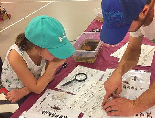 A child and her parent identify macroinvertebrate insects at an educational table at the Kake derby