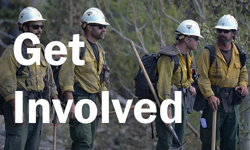 Look for a job with the National Forest Service Fire fighting program
