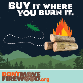 Don't Move Firewood.org, Burn it where you buy it.