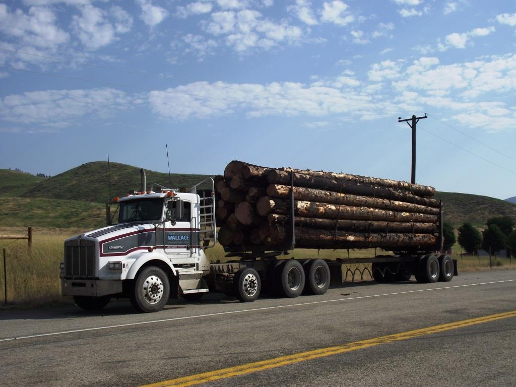 photo of a logging truck leaving Pioneer logging sale