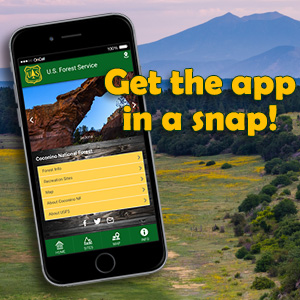Cell phone viewing the Coconino National Forest app