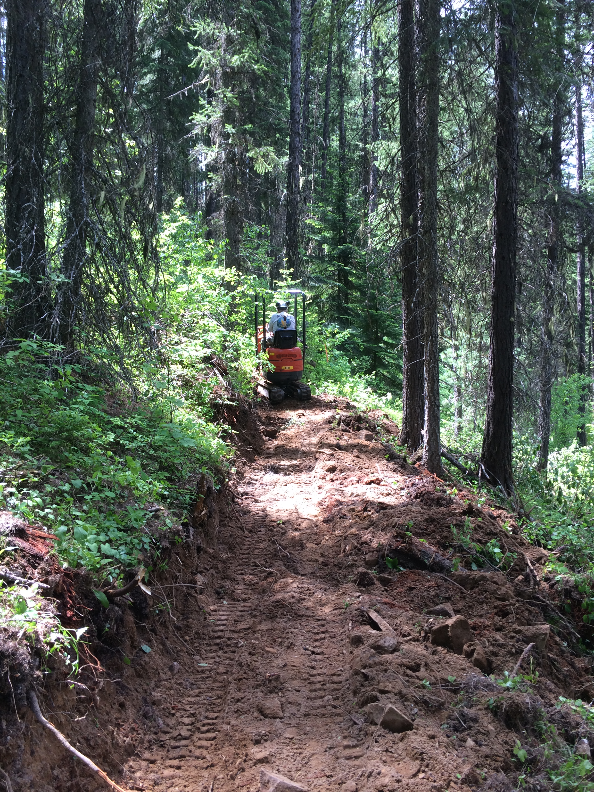 Simmons Ridge trail work