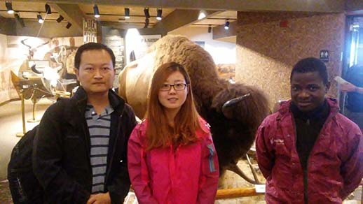 Photo of three international visitors posing for a photo in front of a bison in a museum.