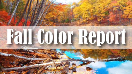 Forest Service Fall Color Report 2018