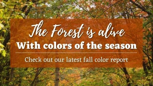 See current fall color reports.