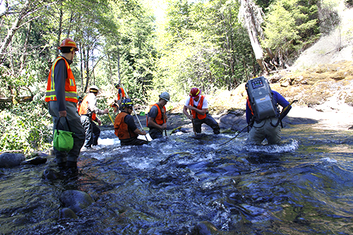 Volunteers collect and transport over 1,600 aquatic species downstream