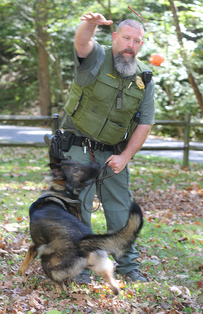 A  Wayne National Forest Law Enforcement Officer Works with his dog.