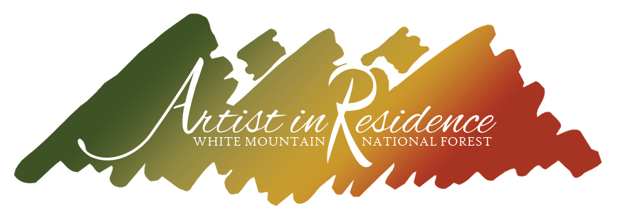 A splash of color highlights the wording Artists in Residency on the White Mountain