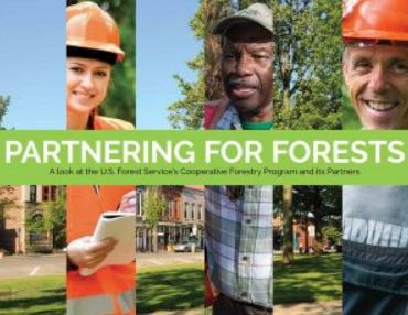 Cover page Partnering for Forest with snapshots of individuals on the ground