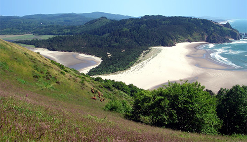 A view from Cascade Head of the Salmon River estuary
