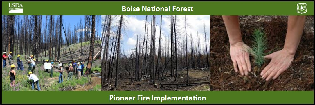 3 photo of Pioneer fire restoration and recovery