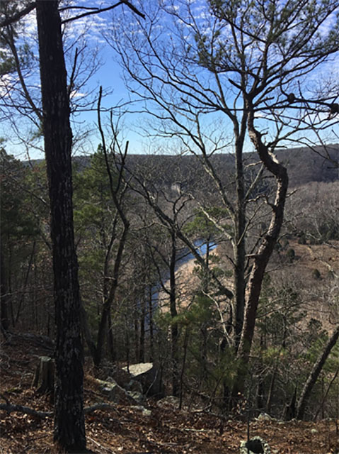View of Big Piney River from Slabtown Bluff Trail