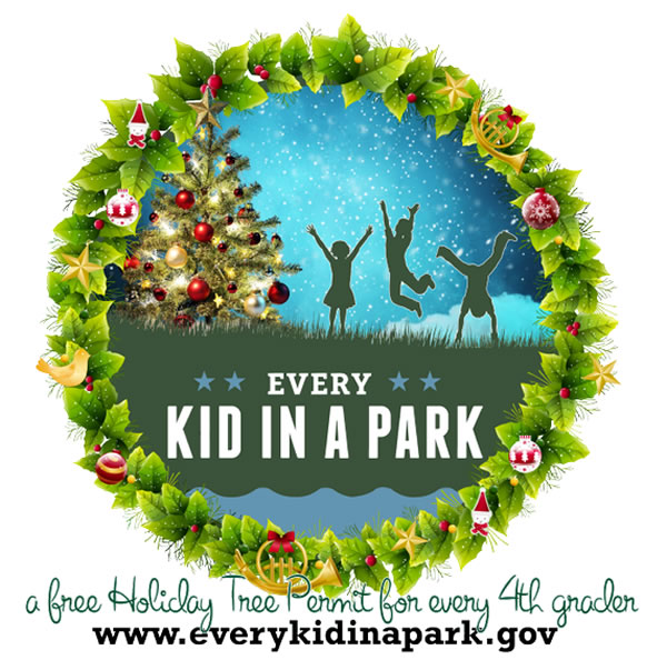 Every Kid in a Park a free Holiday Tree Permit for every 4th grader www.everykidinapark.gov