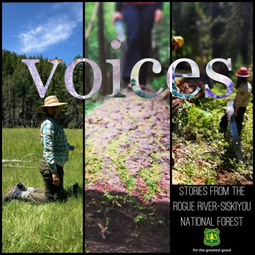 Voices_Cover Image