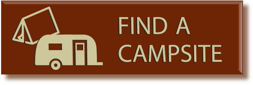 Click here to find out about camping on the forest