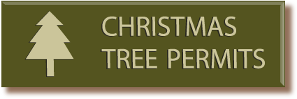 Click here to find out how to get a Christmas Tree Permit