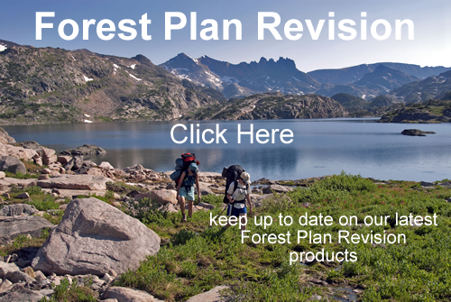 2 Hikers in the Absaroka Beartooth Wilderness, Image directs to Forest Plan Revision information