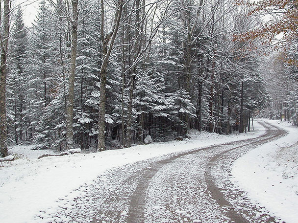 A snow covered road winds through the forest.