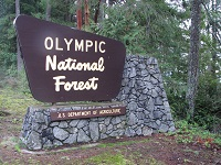 Olympic National Forest sign at Seal Rock
