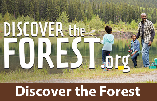 Click here to discover forests near you and fun things to do