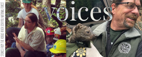 Voices: Dave, Wildlife Biologist