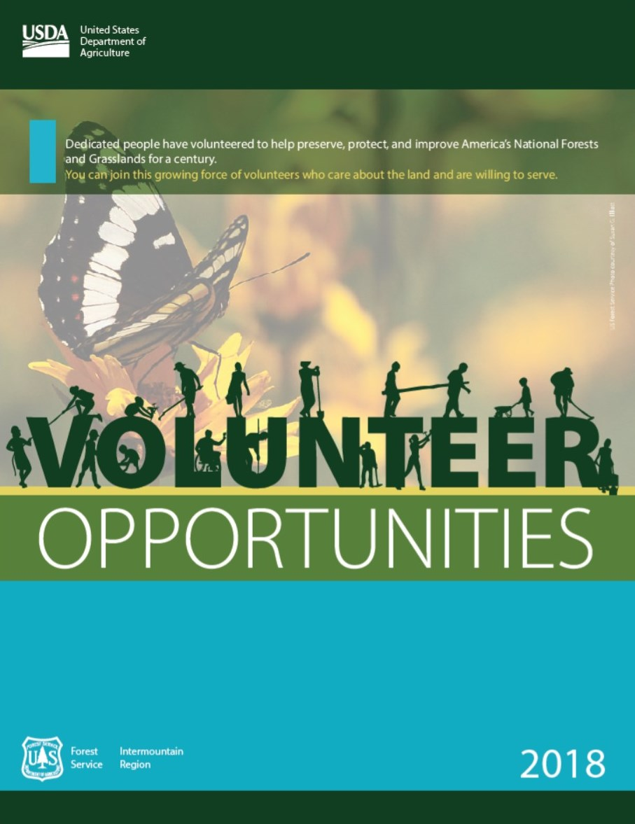 Photo of the cover of the 2018 Volunteer book