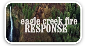graphic: Eagle Creek Fire Response button