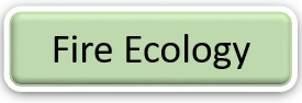 Graphic: Forest fire ecology text. Select to find out more.