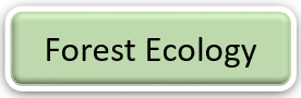 Graphic: Forest ecology text. Select to find out more.