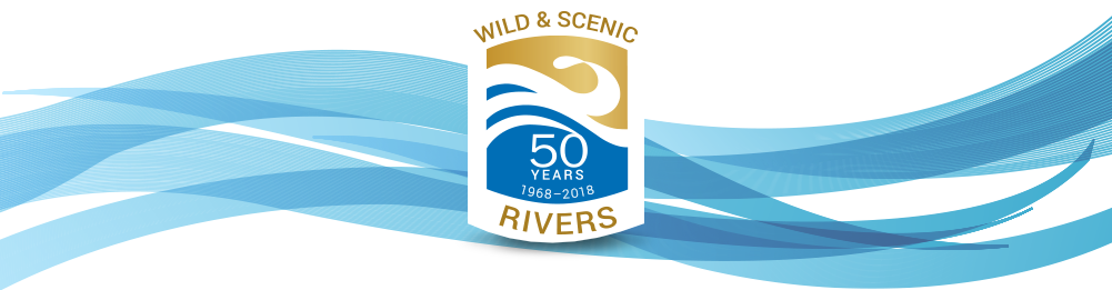 wsr50 logo river waves