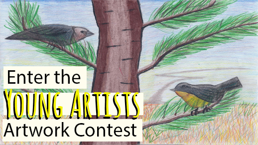 Don't Wait! Enter the Kirtland's Warbler Calendar Contest Now!