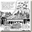 Christina created a ten page comic book showcasing the flora and fauna of the Innoko Wilderness.