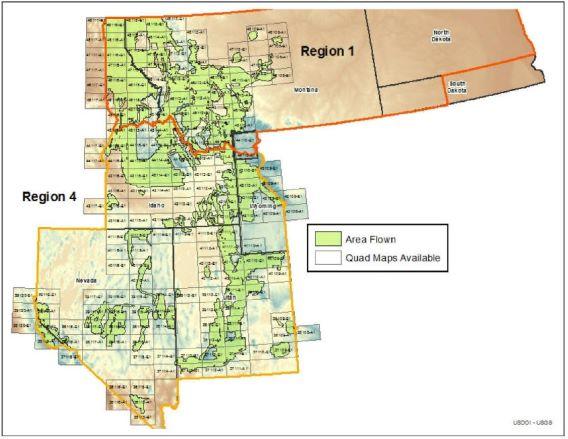 Region2525204-252520Forest252520