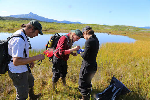 Four people taking measurements next to an alpine lake in the summertime.