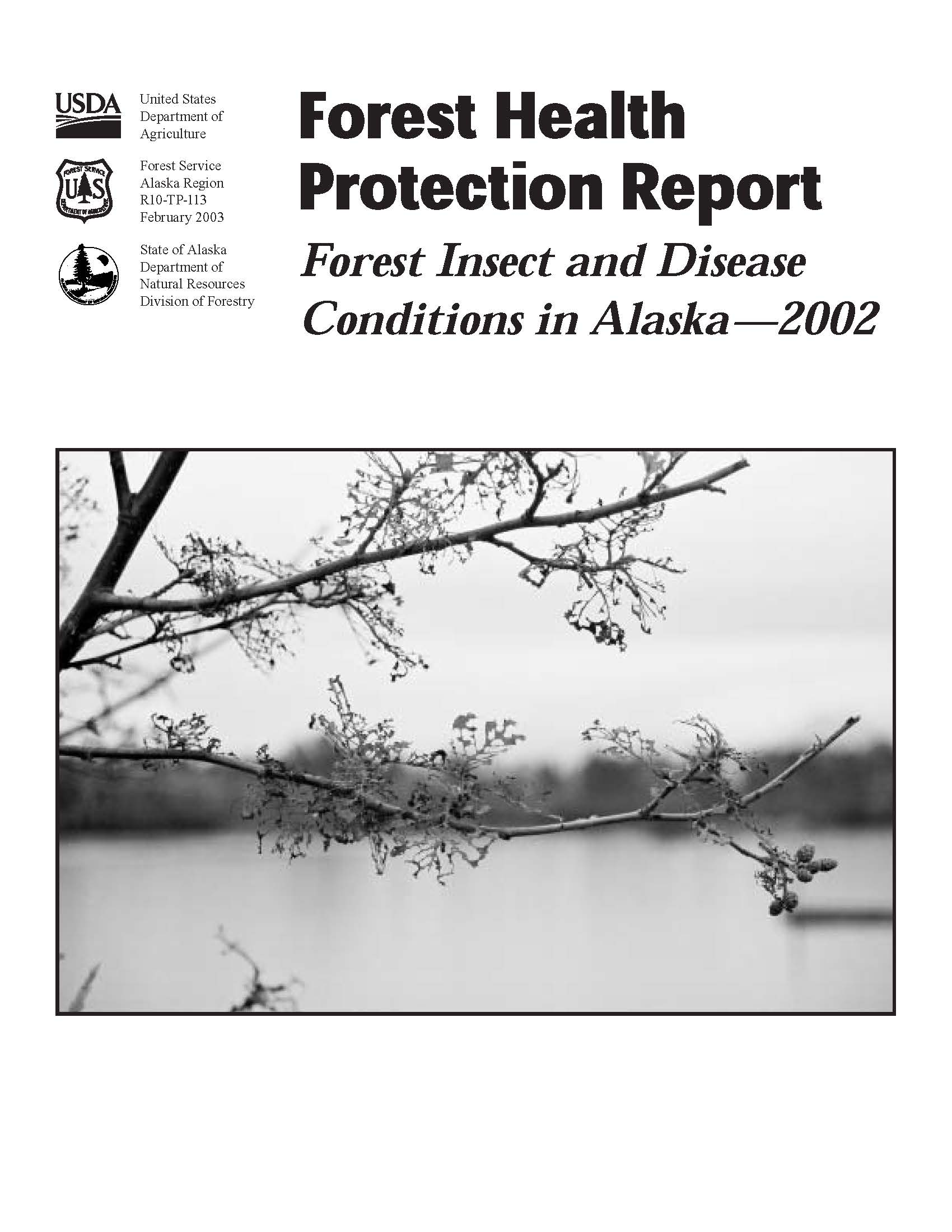Cover of the 2002 Forest Health Conditions in Alaska Report.
