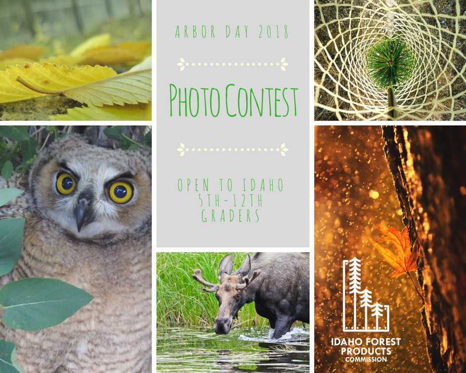 Photos of previous winners of photo contest