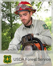 Forest Service Eastern Region Jobs