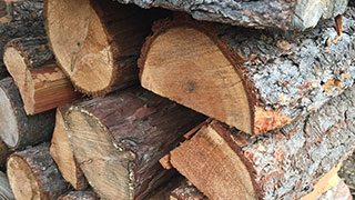 photograph of stacked firewood