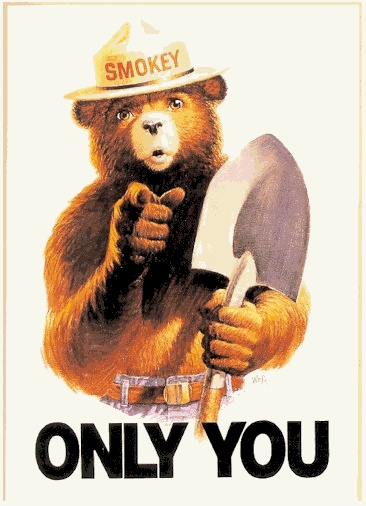 Smokey bear poster only you