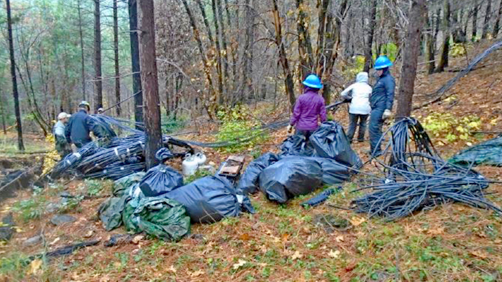 People stand in an illegal forest campsite surrounded by trash bags and irrigation pipes.