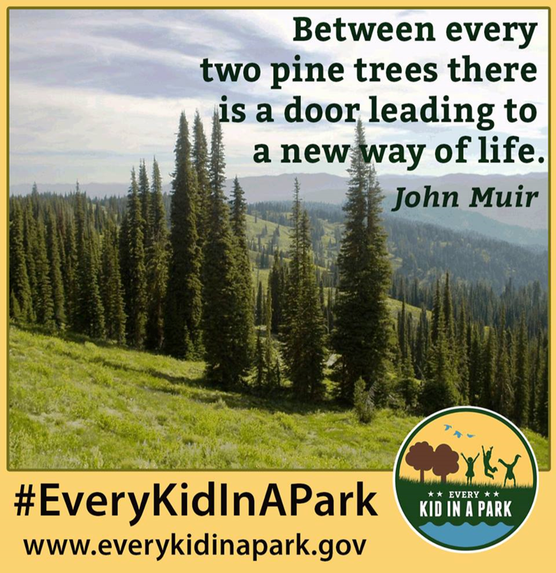 Between every two pine trees there is a door leading to a new way of life. John Muir