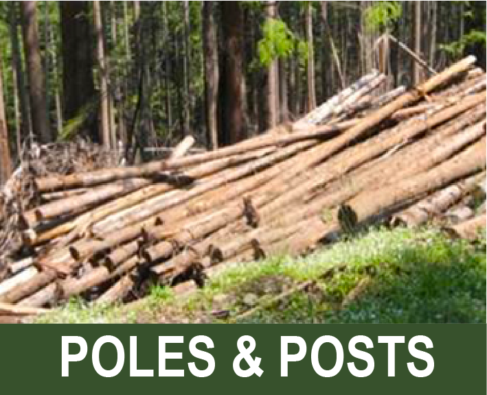 Click for info on poles and posts cutting