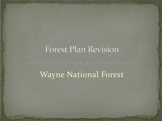 A screen capture of the presentation says Wayne National Forest Forest Plan Revision
