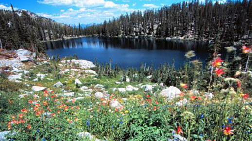 Photo of high mountain lake within Mountain Home Ranger District