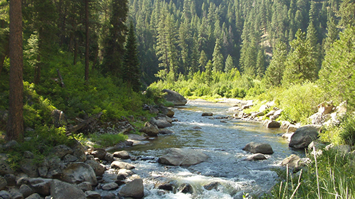 Photo of Middle Fork Payette River within Emmett Ranger District