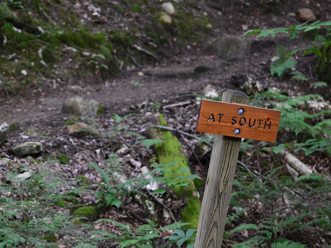 A small wooden sign reads AT South against the mossy forest backdrop