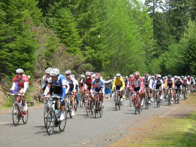 Bike race on forest