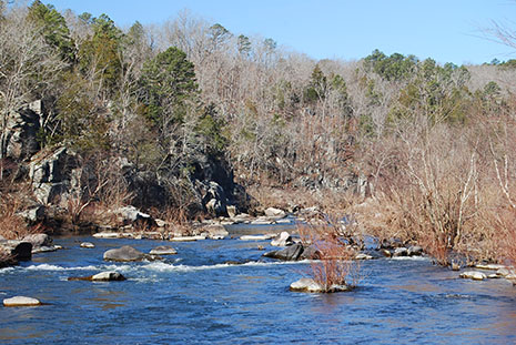 View of St. Francis River at Turkey Creek