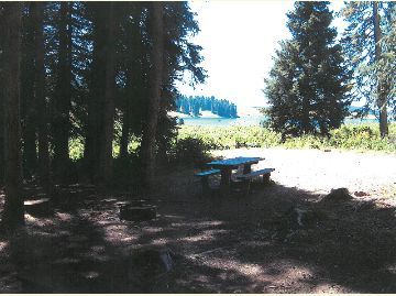Photo of Campsite #1 at the Meadow Lake Campground on the Rifle Ranger District