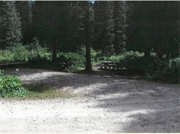 Photo of Campsite #5 at the Meadow Lake Campground, Rifle Ranger District